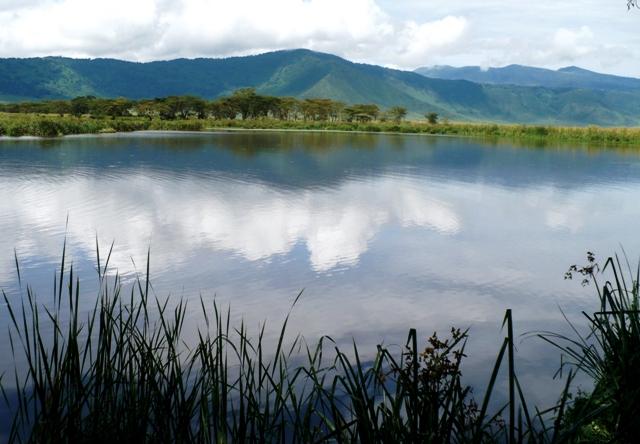 Tanzania; Ngorongoro Crater Pond