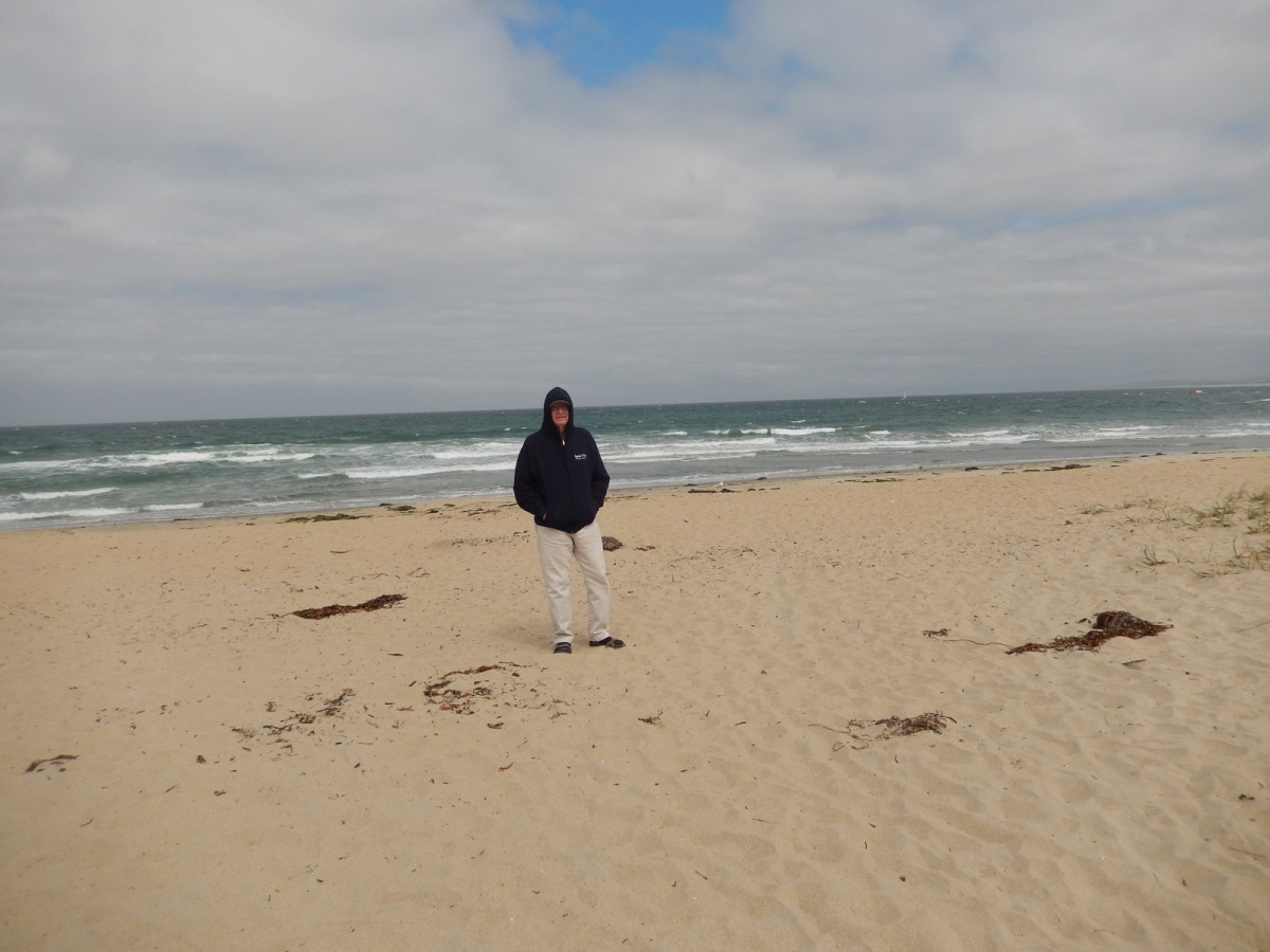 3   nearby beach moss landing koa
