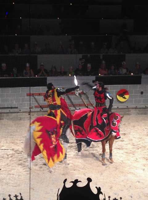 5 medieval times fight web ready