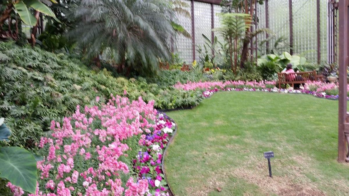 6  Horticulture Center