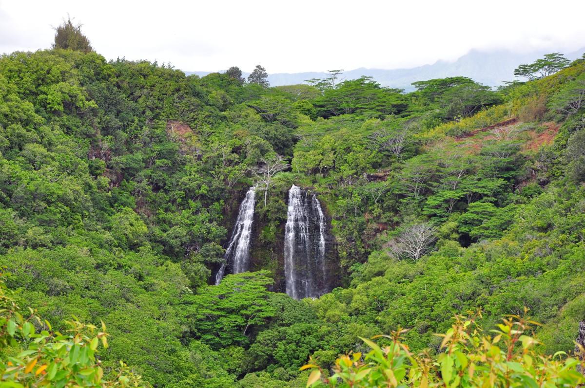 6. Opaekaa Falls