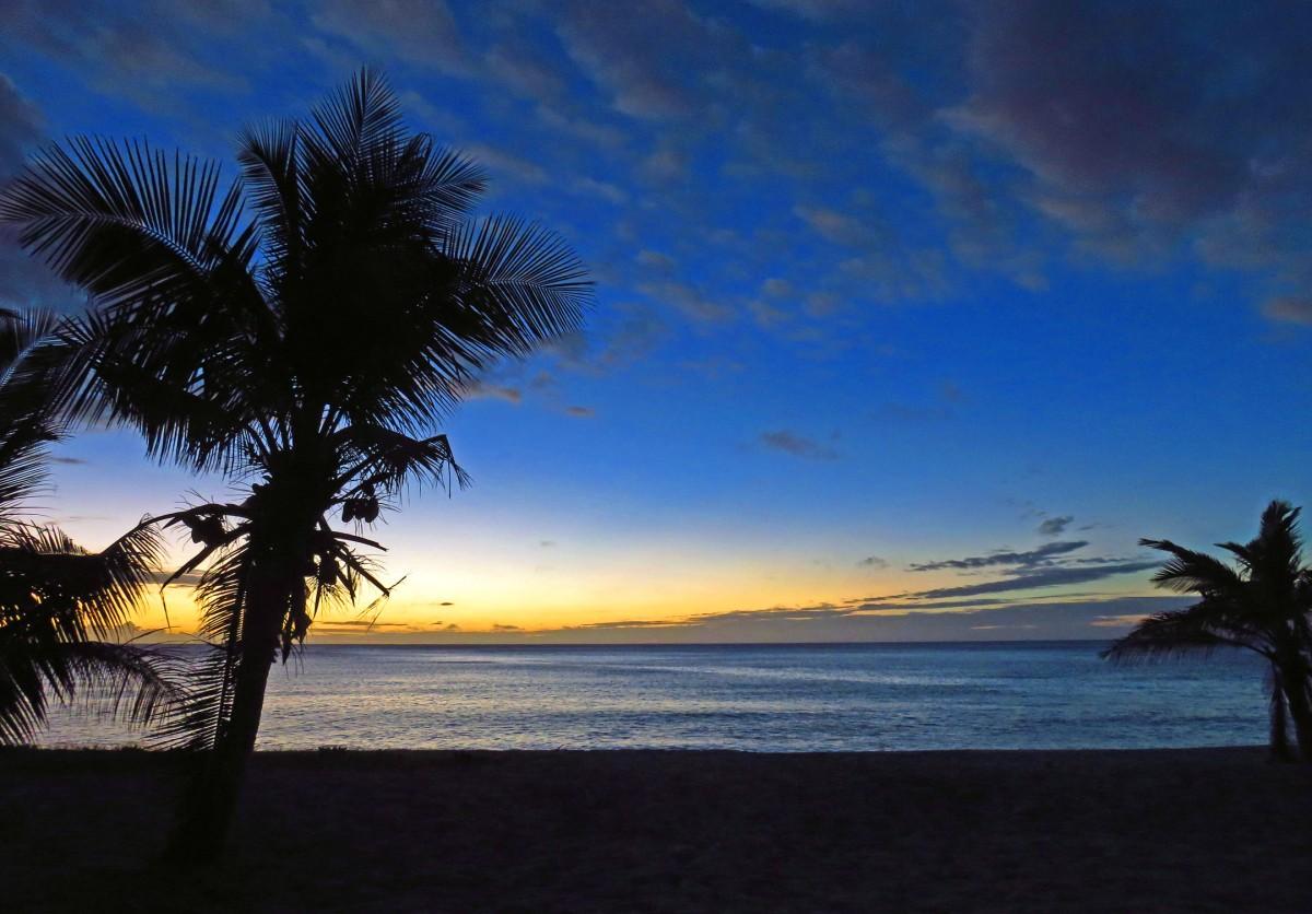 8. Yasawa sunset palms