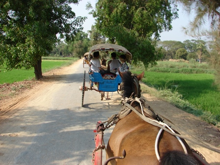 x-horse-and-buggy-ride-to-bagaya-monastery